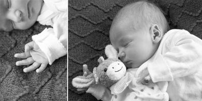 newborn_012